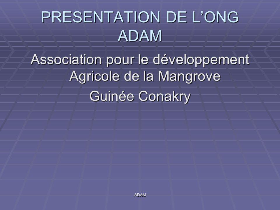 ADAM PRESENTATION DE L'ONG ADAM Association pour le développement Agricole de la Mangrove Guinée Conakry