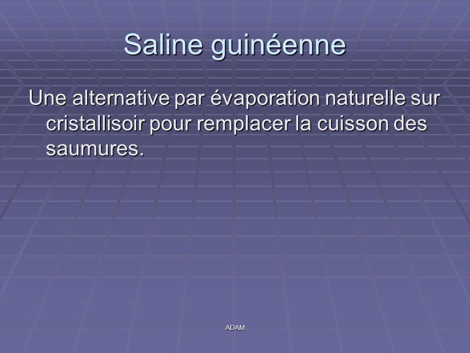 ADAM Saline guinéenne Une alternative par évaporation naturelle sur cristallisoir pour remplacer la cuisson des saumures.