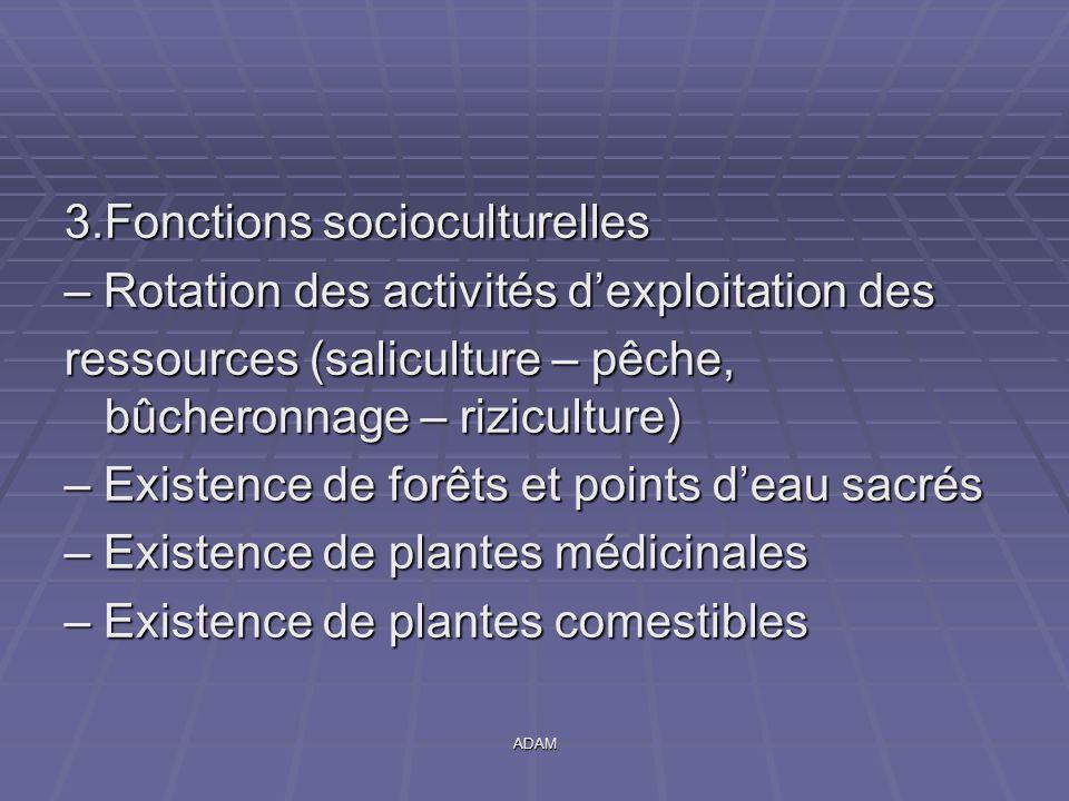 ADAM 3.Fonctions socioculturelles – Rotation des activités d'exploitation des ressources (saliculture – pêche, bûcheronnage – riziculture) – Existence