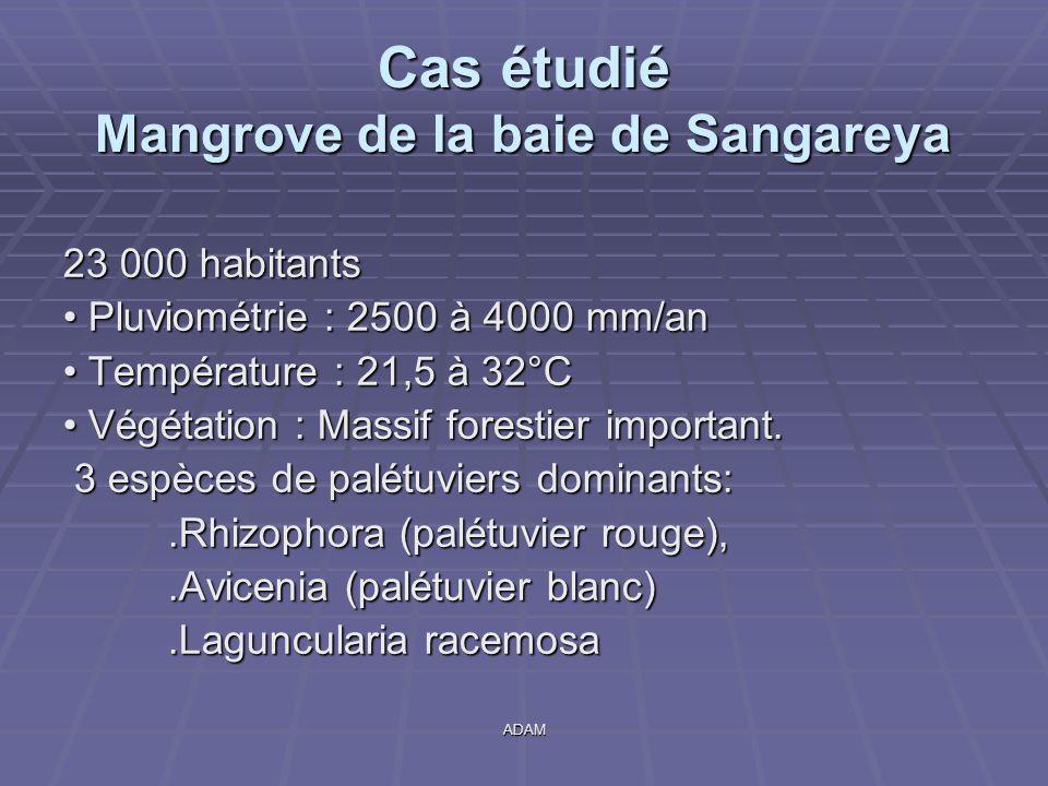 ADAM Cas étudié Mangrove de la baie de Sangareya 23 000 habitants Pluviométrie : 2500 à 4000 mm/an Pluviométrie : 2500 à 4000 mm/an Température : 21,5