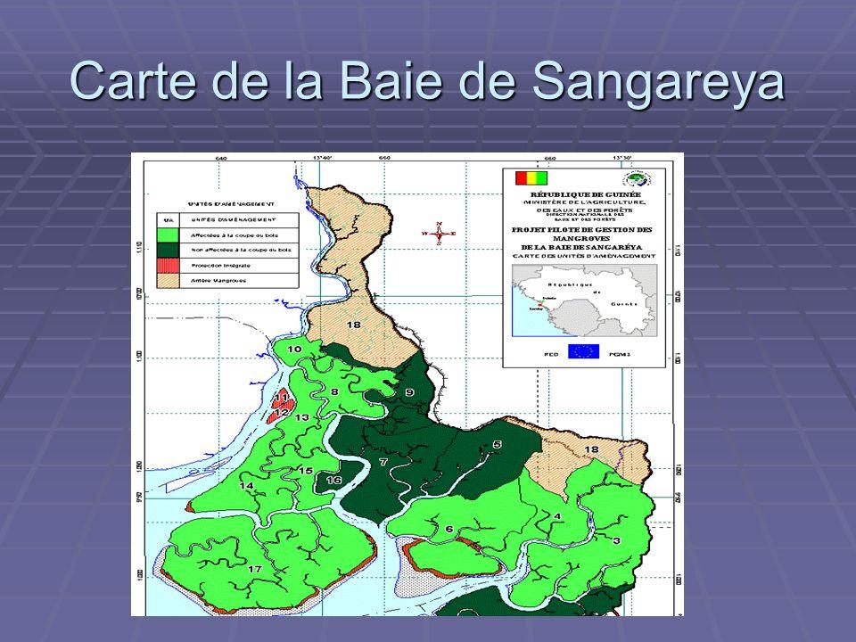 ADAM Carte de la Baie de Sangareya