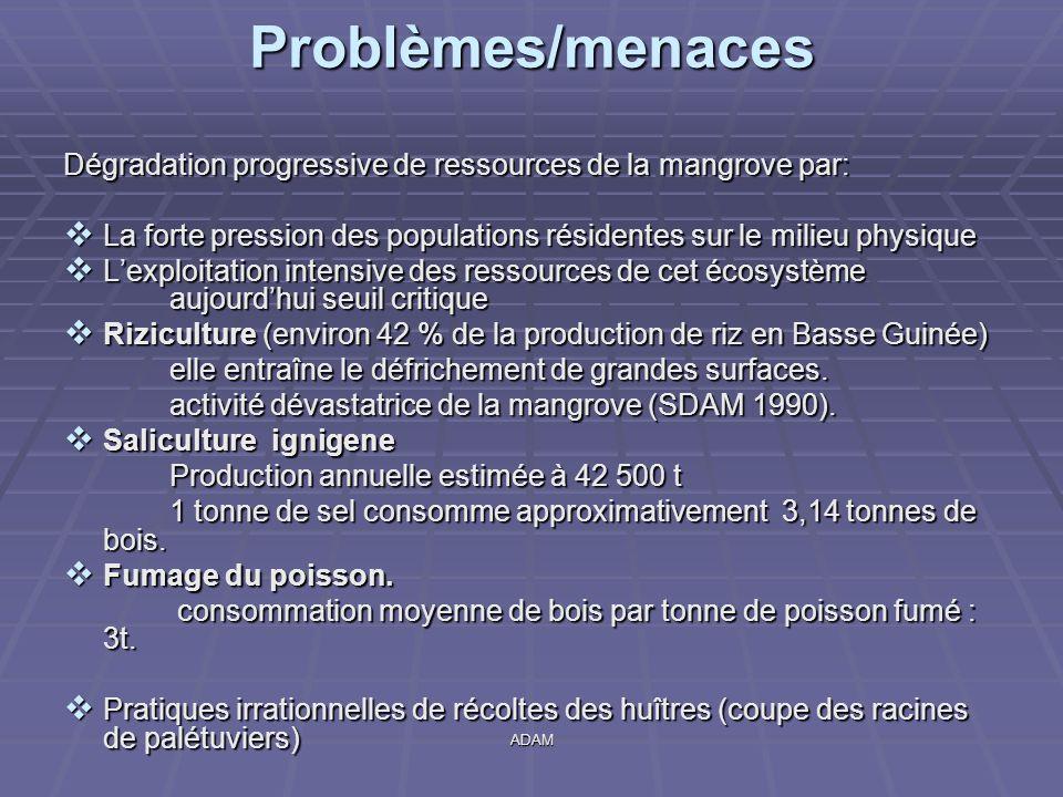 ADAM Dégradation progressive de ressources de la mangrove par:  La forte pression des populations résidentes sur le milieu physique  L'exploitation