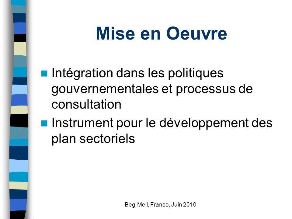 Beg-Meil, France, Juin 2010 Mise en Oeuvre Intégration dans les politiques gouvernementales et processus de consultation Instrument pour le développem