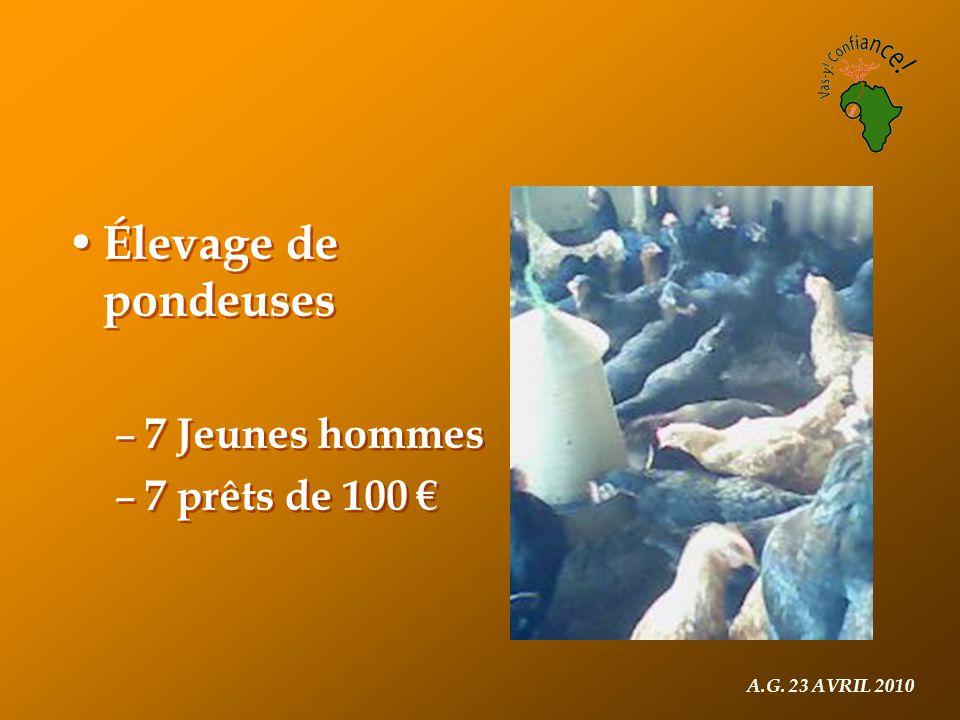 A.G. 23 AVRIL 2010 Élevage de pondeuses – 7 Jeunes hommes – 7 prêts de 100 € Élevage de pondeuses – 7 Jeunes hommes – 7 prêts de 100 €