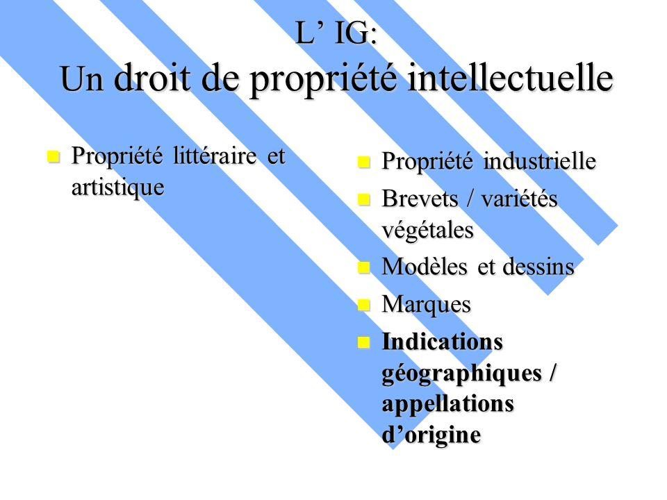 L' IG: Un droit de propriété intellectuelle Propriété littéraire et artistique Propriété littéraire et artistique Propriété industrielle Brevets / var
