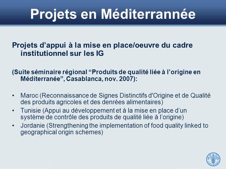 Projets en Méditerrannée Projets d'appui à la mise en place/oeuvre du cadre institutionnel sur les IG (Suite séminaire régional Produits de qualité liée à l'origine en Méditerranée , Casablanca, nov.