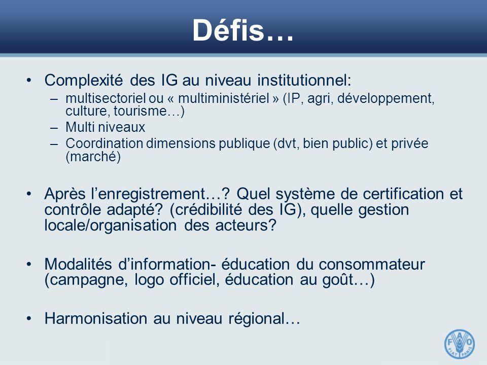 Défis… Complexité des IG au niveau institutionnel: –multisectoriel ou « multiministériel » (IP, agri, développement, culture, tourisme…) –Multi niveaux –Coordination dimensions publique (dvt, bien public) et privée (marché) Après l'enregistrement….