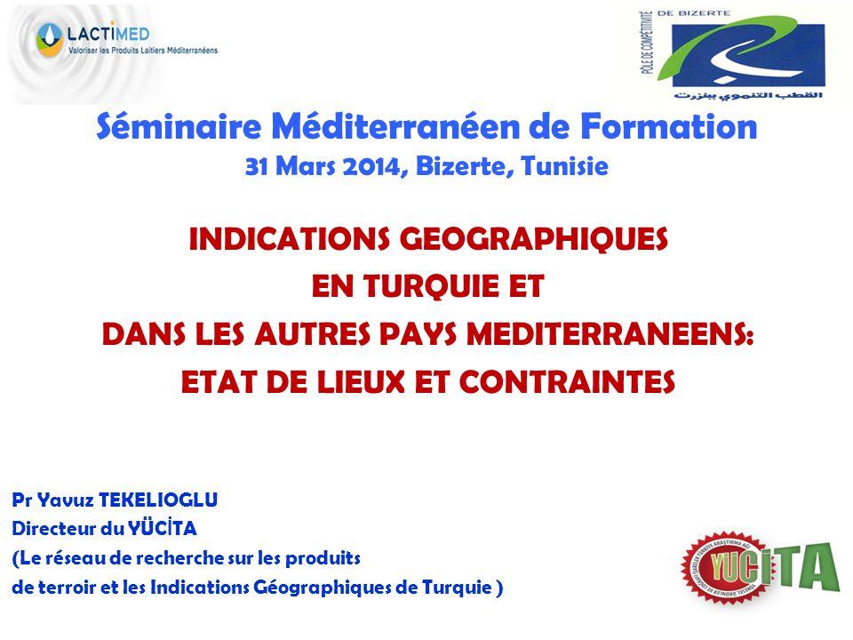 Séminaire Méditerranéen de Formation 31 Mars 2014, Bizerte, Tunisie INDICATIONS GEOGRAPHIQUES EN TURQUIE ET DANS LES AUTRES PAYS MEDITERRANEENS: ETAT