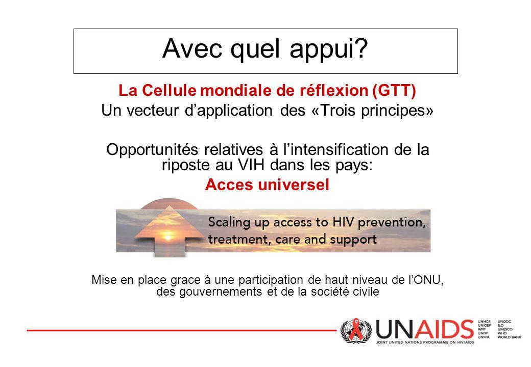 Avec quel appui? La Cellule mondiale de réflexion (GTT) Un vecteur d'application des «Trois principes» Opportunités relatives à l'intensification de l