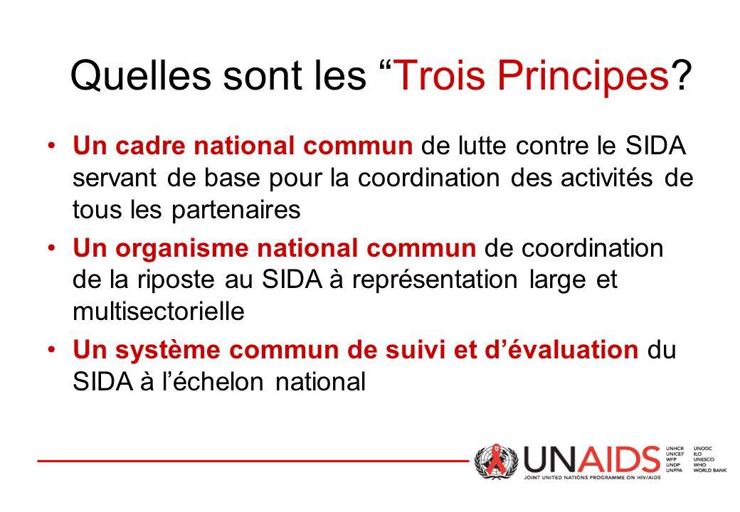 """Quelles sont les """"Trois Principes? Un cadre national commun de lutte contre le SIDA servant de base pour la coordination des activités de tous les par"""