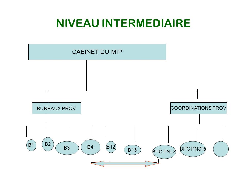 Absence de ligne hiérarchique inter sectorielle bien définie.