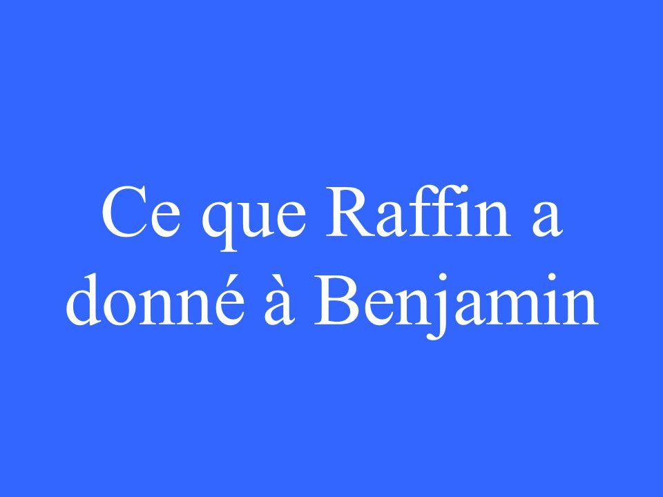 Ce que Raffin a donné à Benjamin