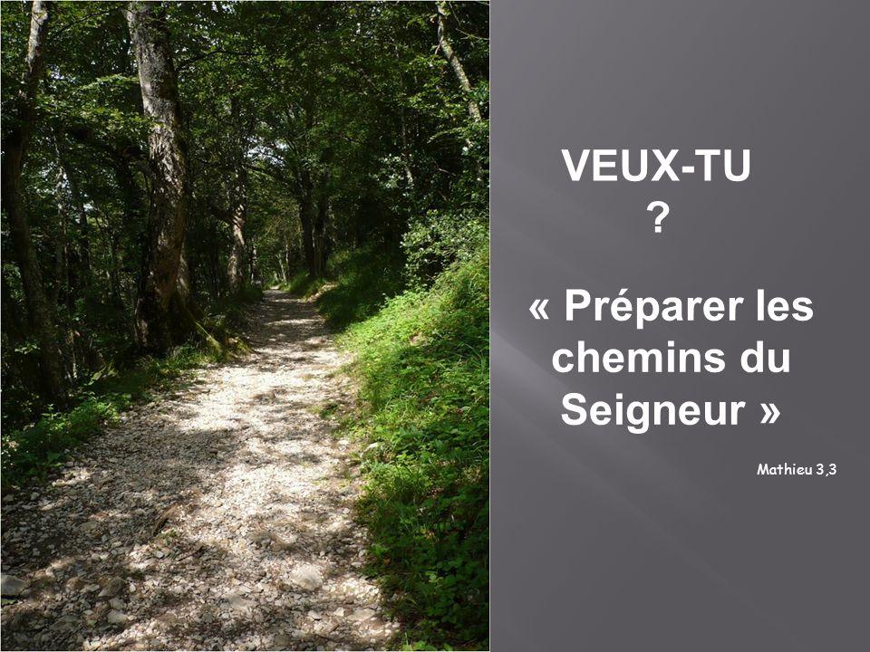 VEUX-TU ? « Préparer les chemins du Seigneur » Mathieu 3,3