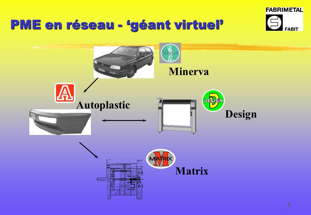 5 Design Matrix Autoplastic Minerva PME en réseau - 'géant virtuel'