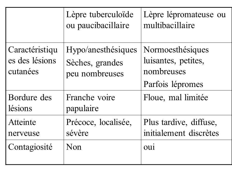Lèpre tuberculoïde ou paucibacillaire Lèpre lépromateuse ou multibacillaire Caractéristiqu es des lésions cutanées Hypo/anesthésiques Sèches, grandes peu nombreuses Normoesthésiques luisantes, petites, nombreuses Parfois lépromes Bordure des lésions Franche voire papulaire Floue, mal limitée Atteinte nerveuse Précoce, localisée, sévère Plus tardive, diffuse, initialement discrètes ContagiositéNonoui
