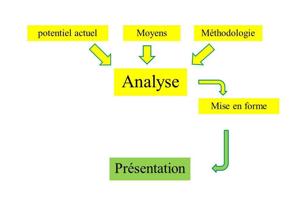 potentiel actuel Analyse MoyensMéthodologie Mise en forme Présentation