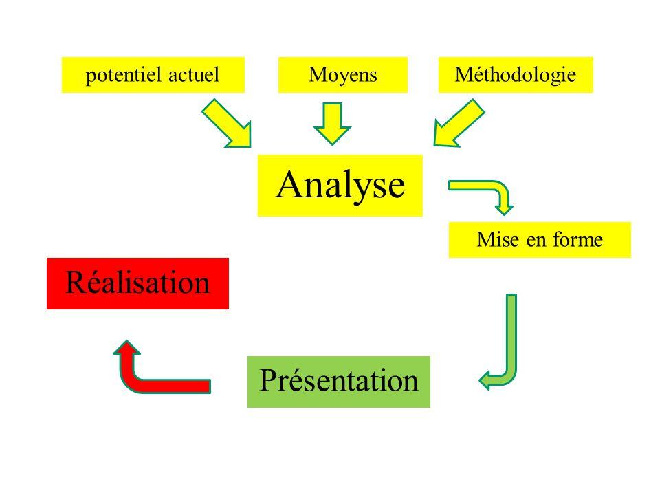 potentiel actuel Analyse MoyensMéthodologie Mise en forme Présentation Réalisation