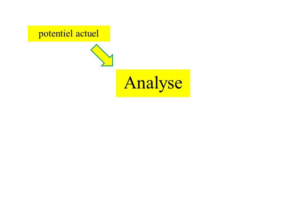 Potentiel actuel Evaluation des joueurs individuellement et leur complémentarité.