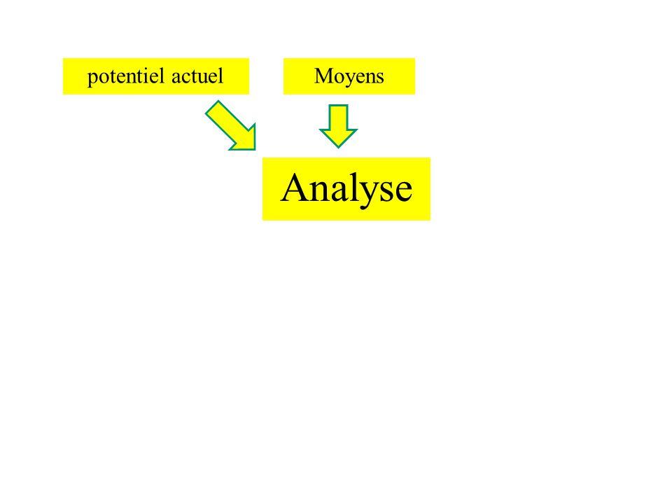 potentiel actuel Analyse MoyensMéthodologie Mise en forme Présentation Réalisation évaluation