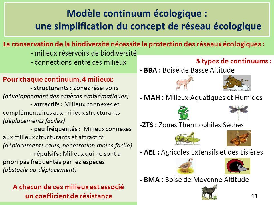 Modèle continuum écologique : une simplification du concept de réseau écologique La conservation de la biodiversité nécessite la protection des réseau