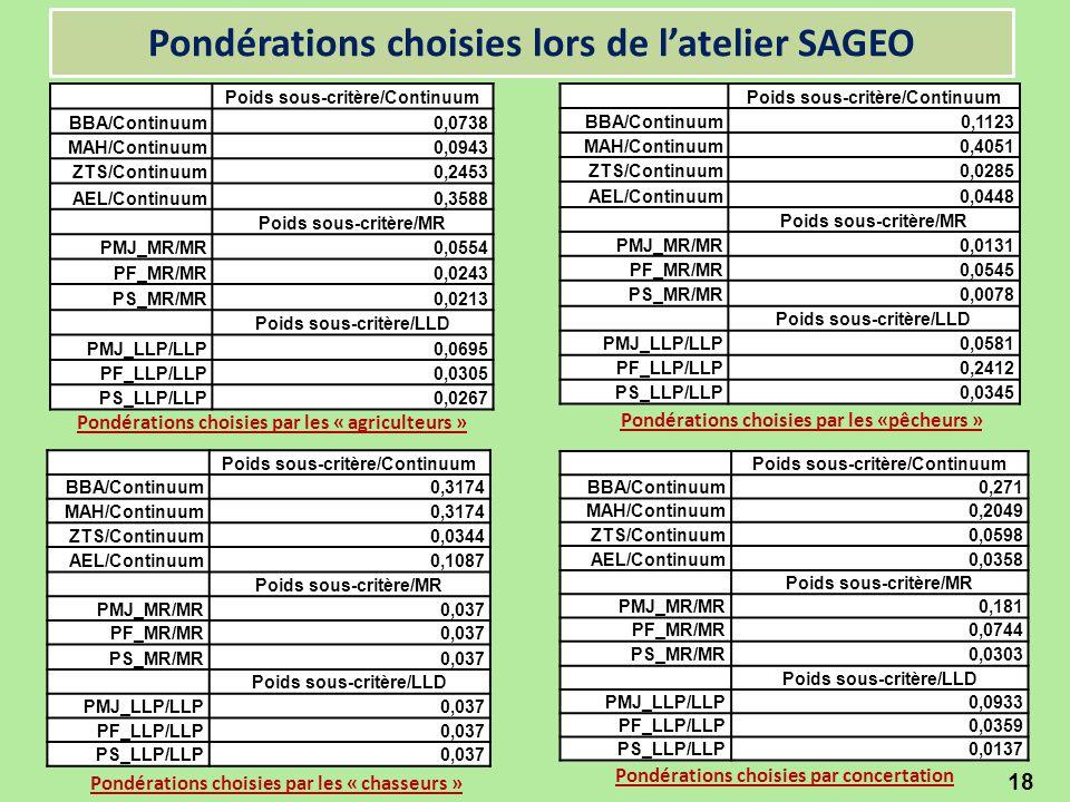 Pondérations choisies lors de l'atelier SAGEO 18 Poids sous-critère/Continuum BBA/Continuum0,0738 MAH/Continuum0,0943 ZTS/Continuum0,2453 AEL/Continuu