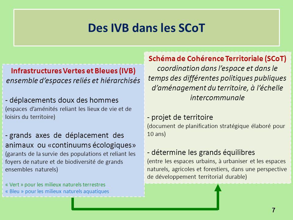 Schéma de Cohérence Territoriale (SCoT) coordination dans l'espace et dans le temps des différentes politiques publiques d'aménagement du territoire,