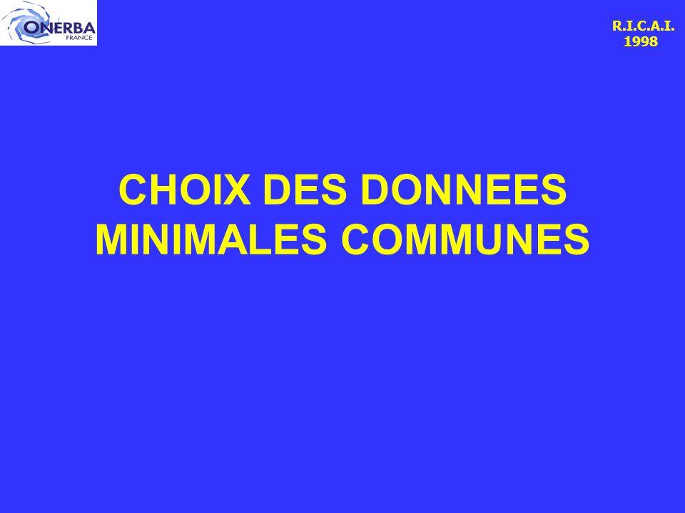 R.I.C.A.I. 1998 CHOIX DES DONNEES MINIMALES COMMUNES