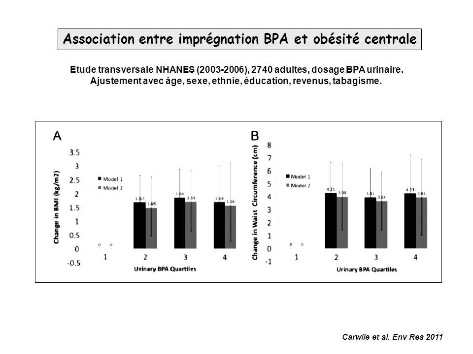 Carwile et al. Env Res 2011 Association entre imprégnation BPA et obésité centrale Etude transversale NHANES (2003-2006), 2740 adultes, dosage BPA uri