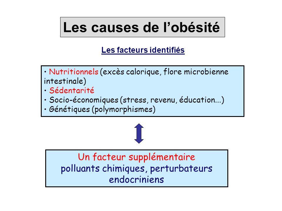 Un facteur supplémentaire polluants chimiques, perturbateurs endocriniens Les causes de l'obésité Nutritionnels (excès calorique, flore microbienne in