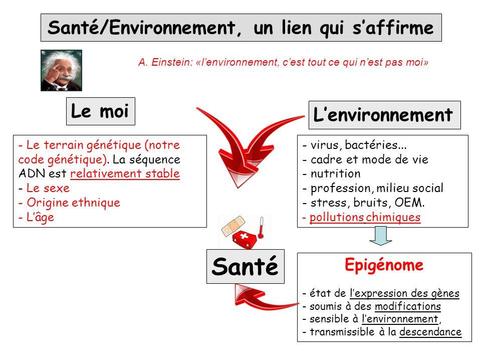 Santé/Environnement, un lien qui s'affirme L'environnement - virus, bactéries... - cadre et mode de vie - nutrition - profession, milieu social - stre