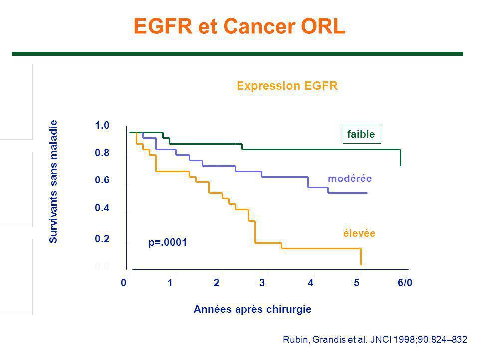 Rubin, Grandis et al. JNCI 1998;90:824–832 EGFR et Cancer ORL 0123456/0 0.0 0.2 0.4 0.6 0.8 1.0 Années après chirurgie Survivants sans maladie Express