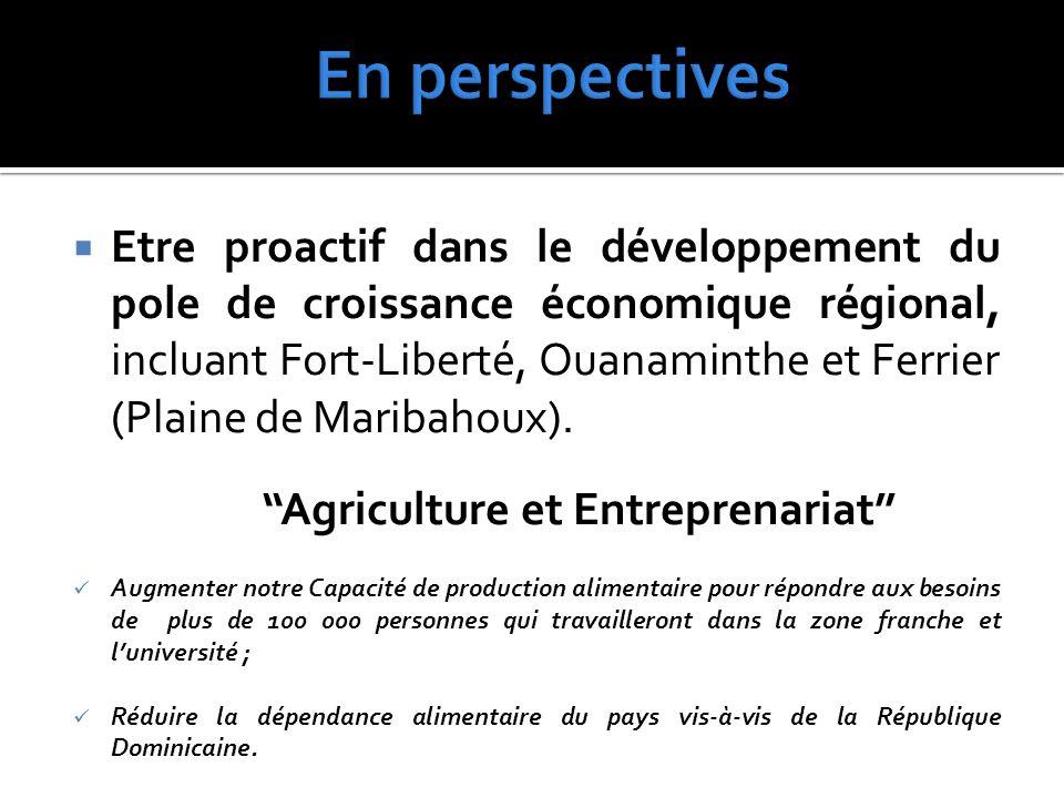  Etre proactif dans le développement du pole de croissance économique régional, incluant Fort-Liberté, Ouanaminthe et Ferrier (Plaine de Maribahoux).