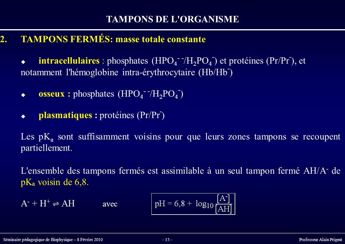 Séminaire pédagogique de Biophysique – 8 Février 2010- 13 - Professeur Alain Prigent TAMPONS DE L ORGANISME 2.TAMPONS FERMÉS: masse totale constante  intracellulaires : phosphates (HPO 4 - - /H 2 PO 4 - ) et protéines (Pr/Pr - ), et notamment l hémoglobine intra-érythrocytaire (Hb/Hb - )  osseux : phosphates (HPO 4 - - /H 2 PO 4 - )  plasmatiques : protéines (Pr/Pr - ) Les pK a sont suffisamment voisins pour que leurs zones tampons se recoupent partiellement.