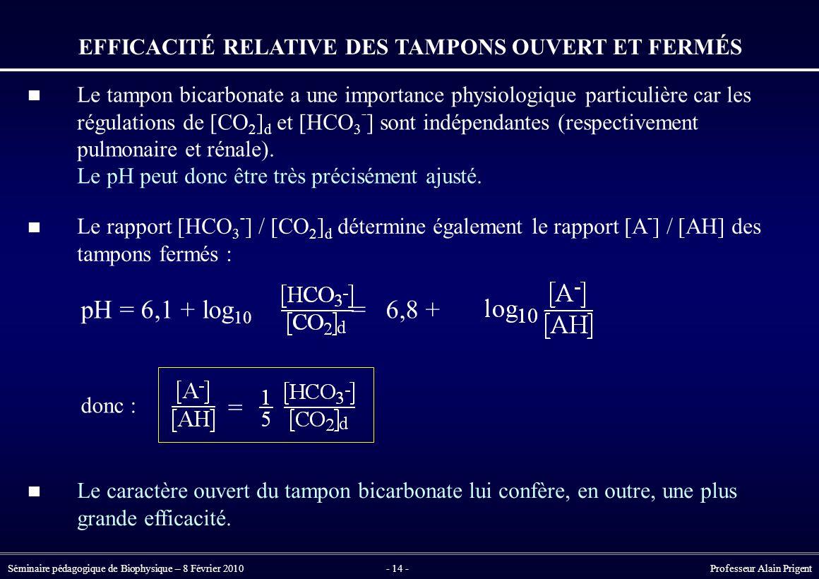 Séminaire pédagogique de Biophysique – 8 Février 2010- 14 - Professeur Alain Prigent EFFICACITÉ RELATIVE DES TAMPONS OUVERT ET FERMÉS pH = 6,1 + log 10 = 6,8 + donc : = Le tampon bicarbonate a une importance physiologique particulière car les régulations de [CO 2 ] d et [HCO 3 - ] sont indépendantes (respectivement pulmonaire et rénale).
