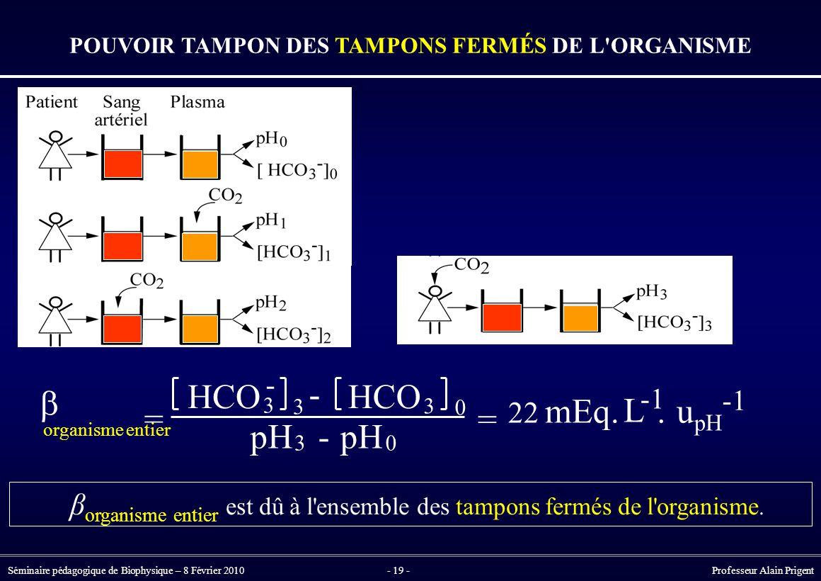 Séminaire pédagogique de Biophysique – 8 Février 2010- 19 - Professeur Alain Prigent  organisme entier = HCO 3 - 3 - 3 0 pH 3 - 0 = 22 mEq.