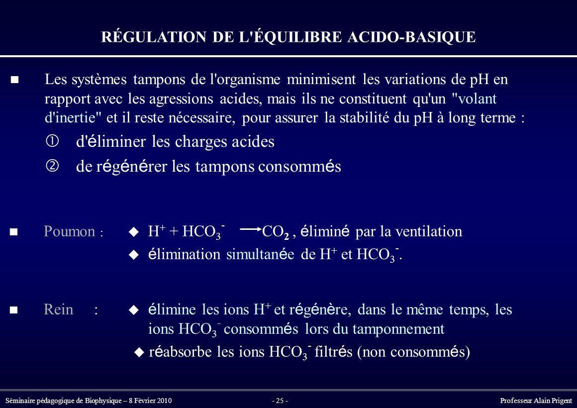 Séminaire pédagogique de Biophysique – 8 Février 2010- 25 - Professeur Alain Prigent RÉGULATION DE L ÉQUILIBRE ACIDO-BASIQUE Les systèmes tampons de l organisme minimisent les variations de pH en rapport avec les agressions acides, mais ils ne constituent qu un volant d inertie et il reste nécessaire, pour assurer la stabilité du pH à long terme :  d é liminer les charges acides  de r é g é n é rer les tampons consomm é s Poumon :  H + + HCO 3 - CO 2, é limin é par la ventilation  é limination simultan é e de H + et HCO 3 -.