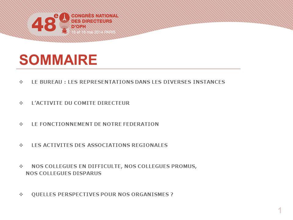 1 SOMMAIRE  LE BUREAU : LES REPRESENTATIONS DANS LES DIVERSES INSTANCES  L'ACTIVITE DU COMITE DIRECTEUR  LE FONCTIONNEMENT DE NOTRE FEDERATION  LES ACTIVITES DES ASSOCIATIONS REGIONALES  NOS COLLEGUES EN DIFFICULTE, NOS COLLEGUES PROMUS, NOS COLLEGUES DISPARUS  QUELLES PERSPECTIVES POUR NOS ORGANISMES