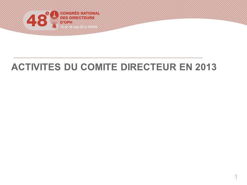 1 ACTIVITES DU COMITE DIRECTEUR EN 2013