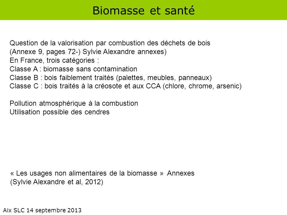 Biomasse et santé Aix SLC 14 septembre 2013 Question de la valorisation par combustion des déchets de bois (Annexe 9, pages 72-) Sylvie Alexandre anne