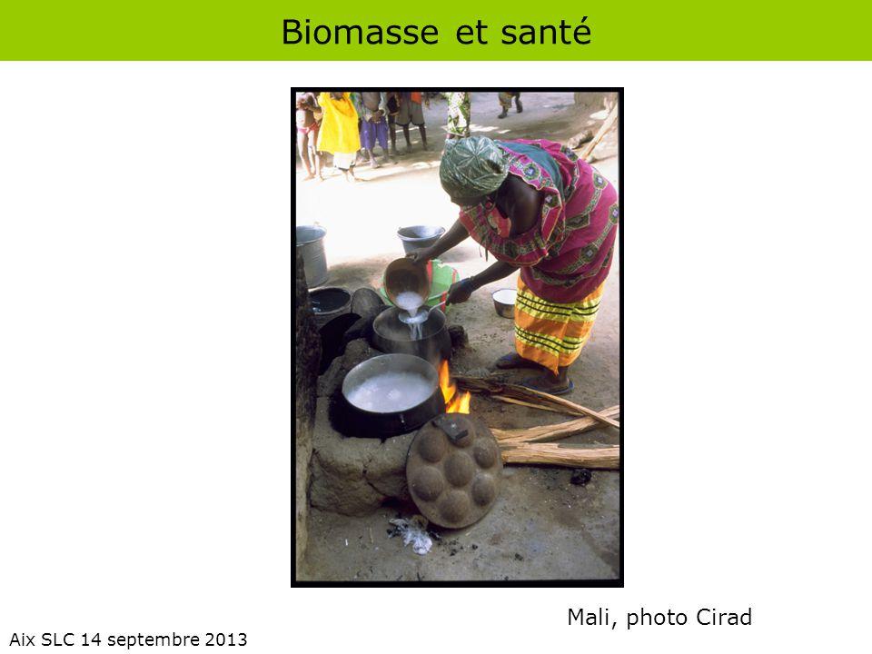 Biomasse et santé Aix SLC 14 septembre 2013 Émissions de polluants produits par repas par le combustible de cuisson comparé au GPL.