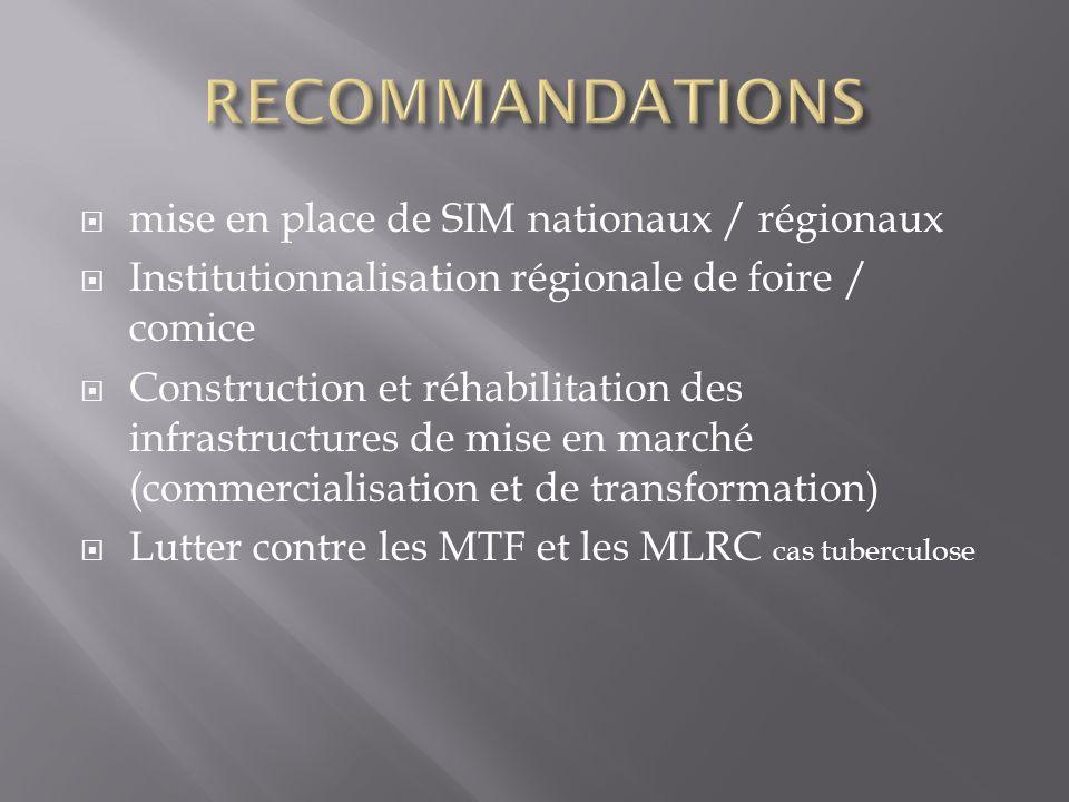  mise en place de SIM nationaux / régionaux  Institutionnalisation régionale de foire / comice  Construction et réhabilitation des infrastructures