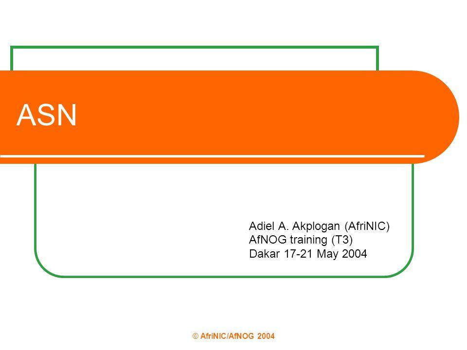 © AfriNIC/AfNOG 2004 ASN Adiel A. Akplogan (AfriNIC) AfNOG training (T3) Dakar 17-21 May 2004
