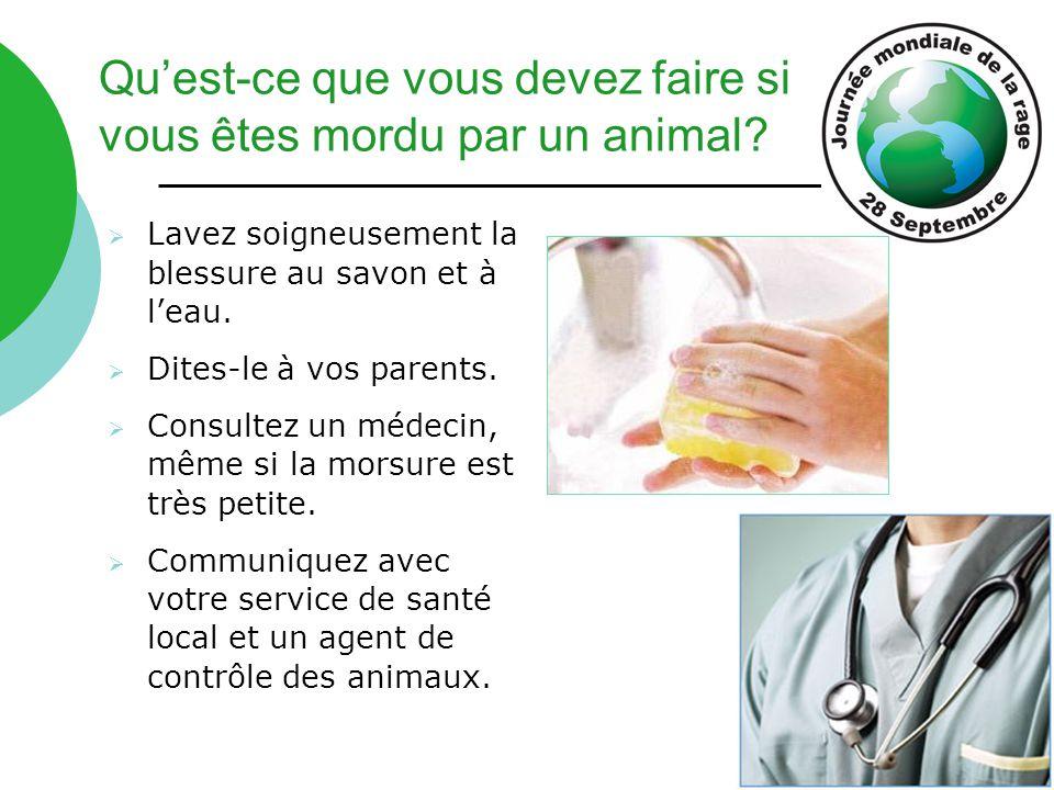 Qu'est-ce que vous devez faire si vous êtes mordu par un animal?  Lavez soigneusement la blessure au savon et à l'eau.  Dites-le à vos parents.  Co