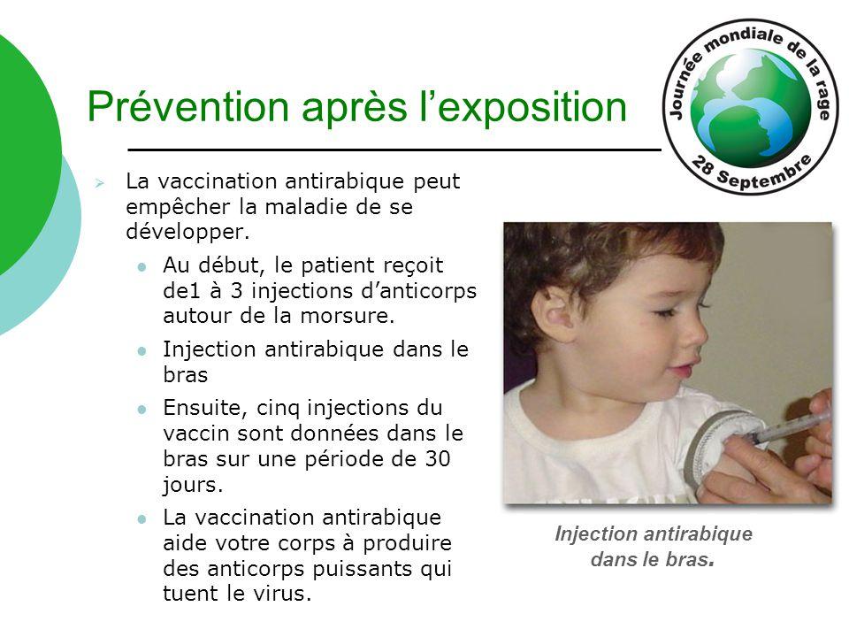 Prévention après l'exposition  La vaccination antirabique peut empêcher la maladie de se développer. Au début, le patient reçoit de1 à 3 injections d