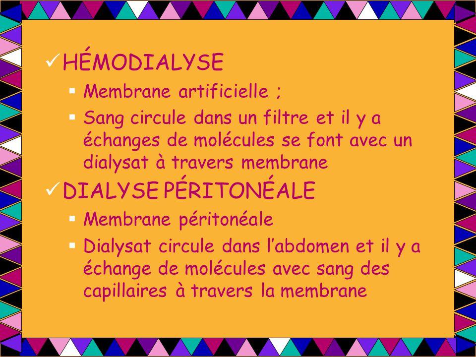 HÉMODIALYSE  Membrane artificielle ;  Sang circule dans un filtre et il y a échanges de molécules se font avec un dialysat à travers membrane DIALYS
