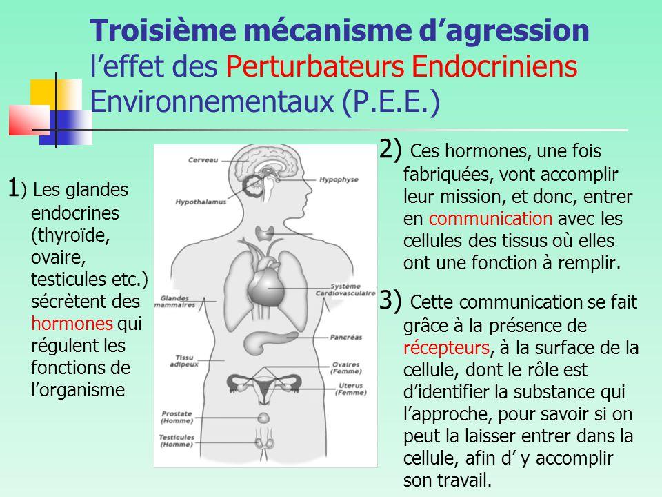Troisième mécanisme d'agression l'effet des Perturbateurs Endocriniens Environnementaux (P.E.E.) 1 ) Les glandes endocrines (thyroïde, ovaire, testicules etc.) sécrètent des hormones qui régulent les fonctions de l'organisme 2) Ces hormones, une fois fabriquées, vont accomplir leur mission, et donc, entrer en communication avec les cellules des tissus où elles ont une fonction à remplir.