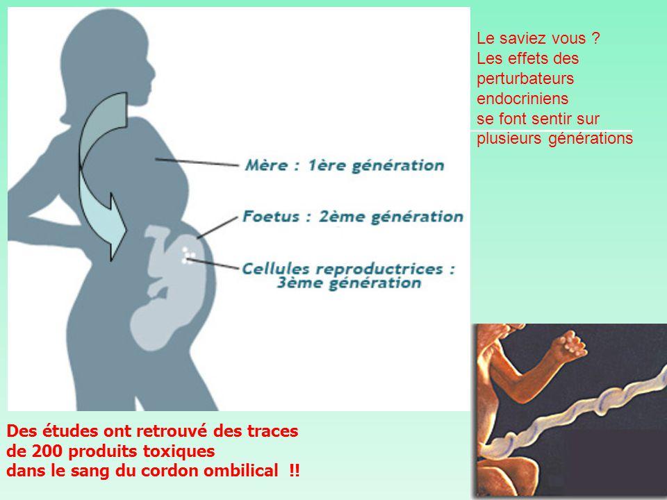 Des études ont retrouvé des traces de 200 produits toxiques dans le sang du cordon ombilical !.