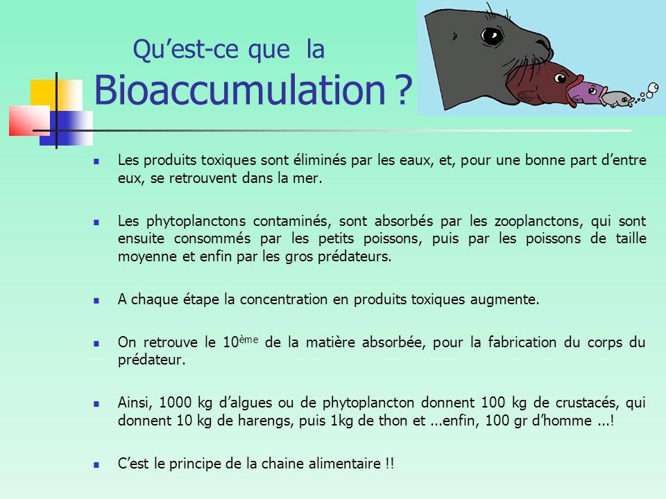 Qu'est-ce que la Bioaccumulation .