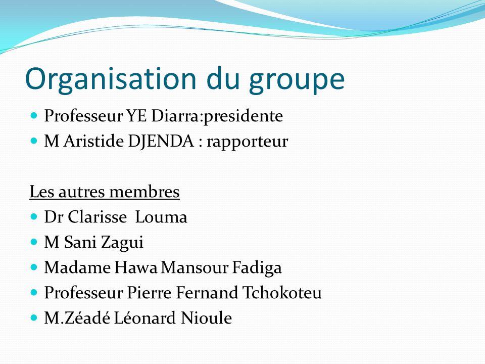 Organisation du groupe Professeur YE Diarra:presidente M Aristide DJENDA : rapporteur Les autres membres Dr Clarisse Louma M Sani Zagui Madame Hawa Ma