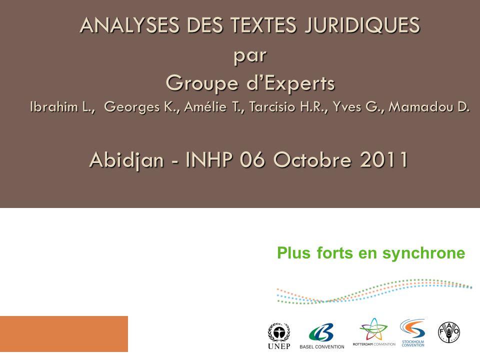 Plus forts en synchrone ANALYSES DES TEXTES JURIDIQUES par Groupe d'Experts Ibrahim L., Georges K., Amélie T., Tarcisio H.R., Yves G., Mamadou D.